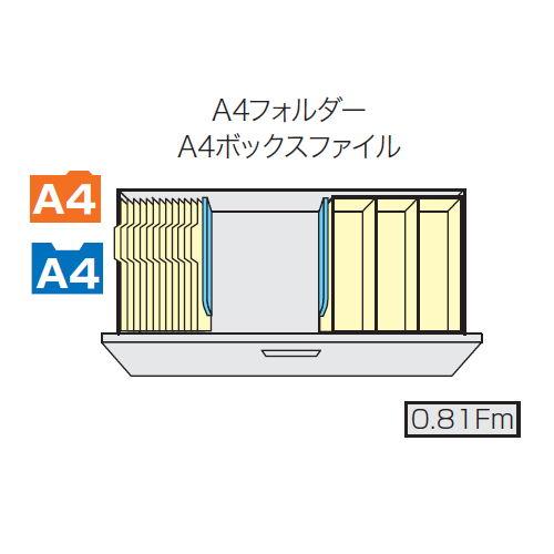 ファイル引き出し書庫 2段 ナイキ ホワイトカラー CWS型 CWS-0907S-2-WW W899×D400×H700(mm)商品画像3